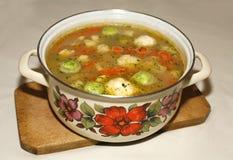 自创蔬菜汤用抱子甘蓝 图库摄影