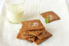自创薄脆饼干用蕃茄和蓬蒿 图库摄影