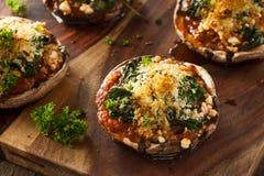 自创被烘烤的被充塞的Portabello蘑菇 免版税图库摄影