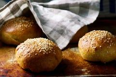 自创软的全麦汉堡小圆面包 土气的样式 库存图片