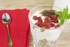 自创酸奶、燕麦粥用草莓和巧克力 洒与可可粉 免版税图库摄影