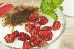 自创酸奶、燕麦粥用草莓和巧克力 洒与可可粉 库存图片