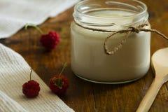 自创酸奶 免版税库存照片