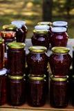 自创野草莓果酱 库存图片
