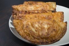 自创金枪鱼和蕃茄饼-西班牙传统开胃菜 库存图片