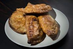 自创金枪鱼和蕃茄饼-西班牙传统开胃菜 图库摄影