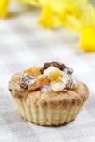 自创馅饼用在被检查的桌布的干果子 免版税库存图片
