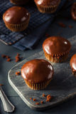 自创黑暗的巧克力杯形蛋糕 库存图片