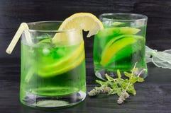 自创mojito在玻璃和新鲜薄荷植物中 免版税库存图片