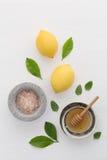 自创skincare概念、腌制槽用食盐、柠檬、蜂蜜浸染工和mi 免版税库存照片