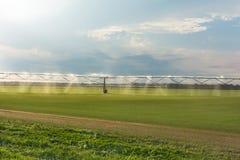 自动化种田灌溉在培养的农业领域的洒水装置 免版税库存图片