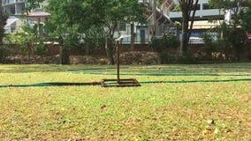 自动喷水隆头浇灌的草和植物在庭院里 股票录像