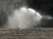 自动灌溉 库存照片