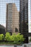 自发反映在城市 库存图片