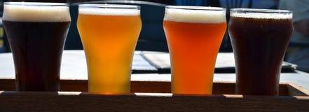 自家酿造啤酒飞行在VT的 库存照片
