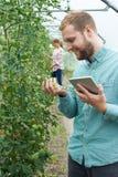 自温室研究西红柿收获的两位科学家使用数字 免版税图库摄影