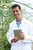 自温室研究西红柿收获的男性科学家 免版税图库摄影