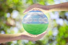 自然世界在大家的手上 免版税图库摄影