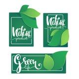 自然产品和Greel生活标签ans贴纸模板与 皇族释放例证