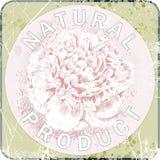 自然产品标签  牡丹 也corel凹道例证向量 库存图片