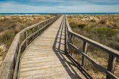 自然保护木板走道走的路线 库存图片