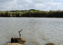 自然保护湖 库存照片