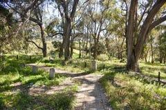 自然保护的Rottnest公墓 免版税库存照片