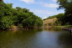 自然保护Ropotamo在保加利亚 库存图片