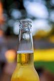 自然全开瓶啤酒 库存照片