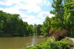 自然公园看法  免版税库存图片