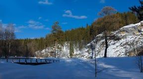 自然公园鹿小河 库存照片