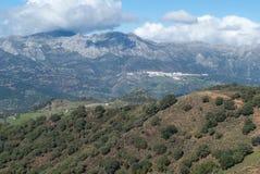 自然公园Sierra de las Nieves,安大路西亚,西班牙 免版税图库摄影