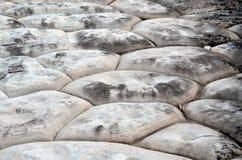 自然六角砂岩岩层 库存图片