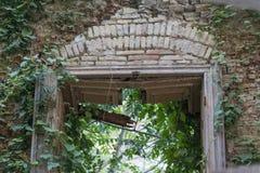 自然再拿一个被放弃的被破坏的大厦 免版税库存图片