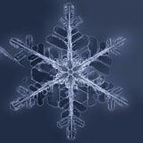 自然冬天雪花 库存图片