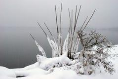 自然冷冻 库存照片