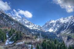 自然冷杉全景和绿色山、雪和天空在Chimbulak阿尔玛蒂,哈萨克斯坦 库存图片