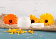 自然化妆用品和共同的万寿菊在黄麻 库存图片