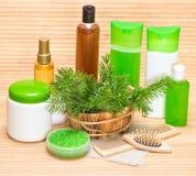 自然化妆用品和辅助部件头发健康和秀丽的 库存图片