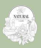 自然化妆用品葡萄酒剪影 库存照片