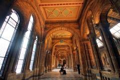 自然历史博物馆内部看法  免版税图库摄影