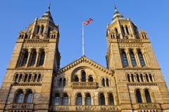 自然历史博物馆在伦敦 免版税库存图片