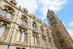 自然历史博物馆大厦门面在伦敦 免版税库存图片