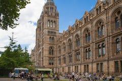 自然历史博物馆是一个游人的最喜爱的博物馆在伦敦 免版税图库摄影