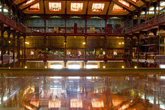 自然历史国家博物馆  免版税图库摄影