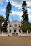 自然历史的博物馆 免版税库存照片