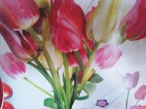 自然可爱的花 库存照片
