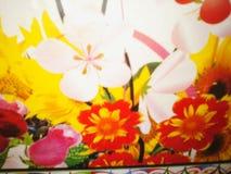 自然可爱的花 免版税库存照片