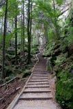 自然台阶 库存图片