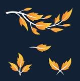 自然叶子装饰品 免版税库存图片